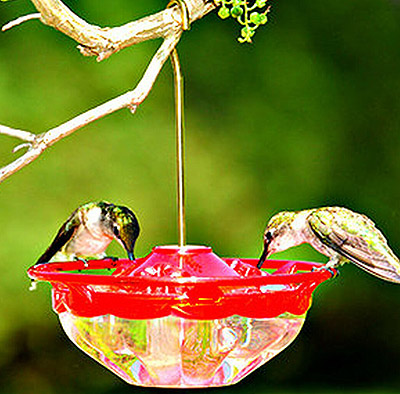 gutter hanging hummingbird me feeder from lecs